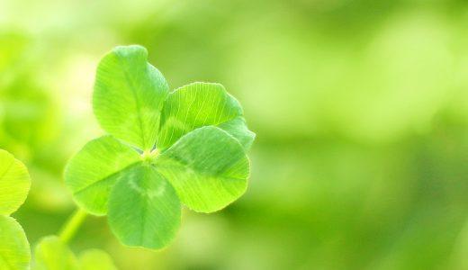 運がいいと自分で思うこと。
