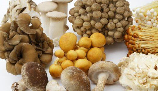 食物繊維が多い「きのこ」ランキングベスト10